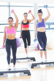 Fitness class performing step aerobics exercise with dumbbells Royalty Free Stock Photos