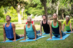 Fitness class practicing yoga Stock Images