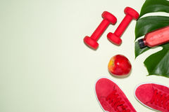 Fitness concept. Sneakers, apple, dumbbell and fruit juice bottl. E on pastel color background Royalty Free Stock Images