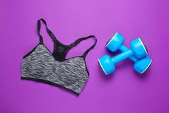 Fitness concept. Sports bra, dumbbells on a purple background. Top view, minimalism stock photography