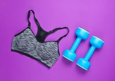Fitness concept. Sports bra, dumbbells on a purple background. Top view, minimalism stock photo