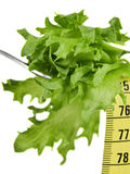 Fitness and Diet Food. Close up of Salad and Measuring Tape on Fork on White, Representing Diet and Fitness Goals and Lifestyle Royalty Free Stock Images