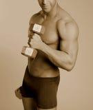 fitness dolców model sepiowy fizycznej Fotografia Royalty Free