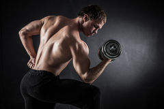 Fitness with dumbbells Royalty Free Stock Photography