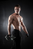 Fitness with dumbbells Stock Photography