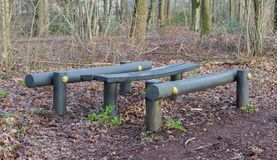 Fitness equipment in a forest - One stage of many Stock Image