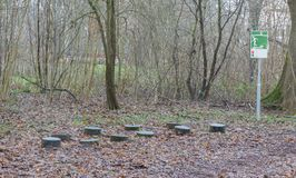 Fitness equipment in a forest - One stage of many Stock Images