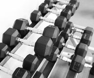 Fitness exercise equipment dumbbell weights Royalty Free Stock Photo