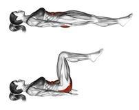 Fitness exercising. Ab draw leg side. Female Stock Images