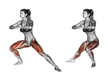 Fitness exercising. Side lunges. Female. Side lunges. Exercising for Fitness. Target muscles are marked in red. Initial and final steps royalty free illustration