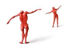 Fitness&fatless-1 Stock Image