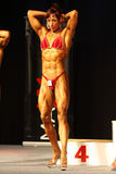 Fitness Figure Royalty Free Stock Photo