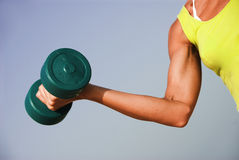 Fitness Girl. A yound woman exercising with a dumbell Stock Photos