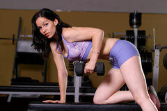 Fitness girl. A fitness girl working out in the gym Stock Photography