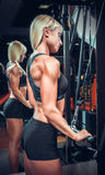 Fitness girl in black sport wear with perfect body Royalty Free Stock Image