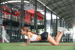 Fitness girl doing abs exercise to tone stomach muscles. Tiger c. Url reverse crunch planking bodyweight floor workout. Asian fit woman training outdoors on royalty free stock image