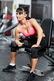 Fitness girl doing biceps workout Stock Image