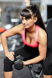 Fitness girl doing biceps workout Royalty Free Stock Photos
