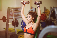 Fitness girl at the gym with dumbbells. The concept of health, sports Royalty Free Stock Images