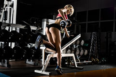 Fitness girl in gym. Fitness girl  execute exercise with  dumbbells, on broadest muscle of back Royalty Free Stock Photography