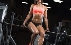 Fitness girl posing in the gym. Fitness girl with a beautiful smile posing in the gym Stock Image