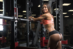Fitness girl posing in the gym. Fitness girl with a beautiful smile posing in the gym Royalty Free Stock Photography