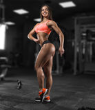 Fitness girl posing in the gym. Fitness girl with a beautiful smile posing in the gym Stock Images