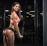 Fitness girl posing in the gym Royalty Free Stock Photo