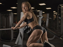 Fitness girl posing in the gym. Muscular fitness girl with a beautiful smile posing in the gym Stock Image