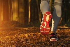 Fitness Girl running at sunset Stock Images