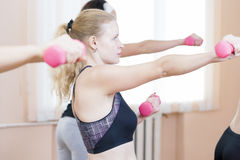 Fitness Girls Exercising with Barbells In Gym Indoors.Horizontal Image Stock Photos