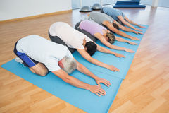 Fitness group bowing in row Royalty Free Stock Images