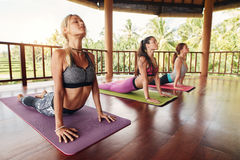 Fitness group doing cobra pose in row at yoga class Stock Image