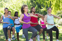 Fitness group doing tai chi in park. On a sunny day stock images