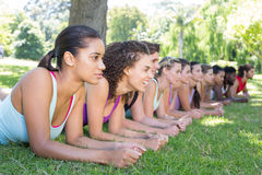 Fitness group planking in park Stock Photo