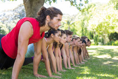 Fitness group planking in park Stock Photos