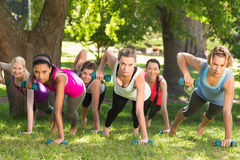 Fitness group planking in park. On a sunny day stock photo