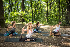 Fitness group practice anti-stress stretching in harmony of nature royalty free stock image