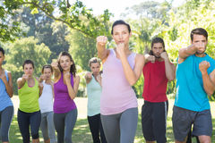 Fitness group working out in park Royalty Free Stock Photo