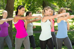 Fitness group working out in park Royalty Free Stock Photos