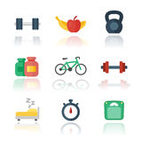 Fitness, gym flat icons over white. Vector illustration, eps 10 file, easy to edit Stock Photos
