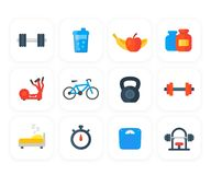 Fitness, gym, training icons. Eps 10 file, easy to edit Stock Photo