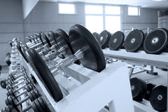 Fitness hall. Dumbbells and bars in a hall for employment by fitness Royalty Free Stock Image