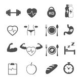 Fitness and healthy care icons set vector. Fitness and healthy care on white icons set vector Royalty Free Stock Image