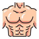 Fitness and healthy Chest muscle. Chest muscle illustration design vector isolated on white background vector illustration