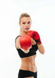 Fitness healthy women boxing isolated Royalty Free Stock Image