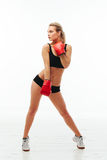 Fitness healthy women boxing in studio isolated Royalty Free Stock Images