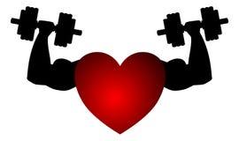 Fitness heart isolated Royalty Free Stock Photo