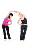 Fitness instructors  isolated on white Stock Photography