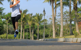 Fitness jogger legs running at tropical park Stock Image